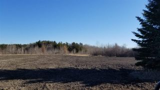 Photo 21: #3-51227 RGE RD 270 Road: Rural Parkland County Rural Land/Vacant Lot for sale : MLS®# E4211009