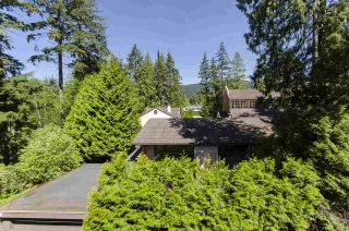 """Photo 15: 304 3732 MT SEYMOUR Parkway in North Vancouver: Indian River Condo for sale in """"Nature's Cove"""" : MLS®# R2454697"""