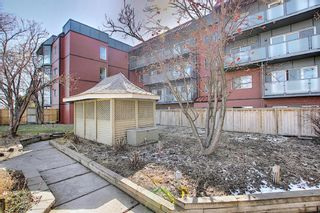 Photo 27: 411 333 Garry Crescent NE in Calgary: Greenview Apartment for sale : MLS®# A1088693