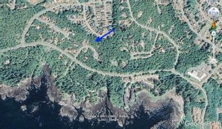 Photo 6: lot 50 Cedar Grove Pl in : PA Ucluelet Land for sale (Port Alberni)  : MLS®# 876745