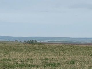 Photo 4: TOWNSHIP ROAD 574 in Rural Rocky View County: Rural Rocky View MD Land for sale : MLS®# A1091964