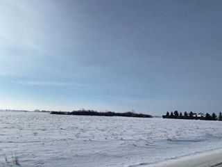 Photo 10: 26008 TWP RD 543: Rural Sturgeon County Rural Land/Vacant Lot for sale : MLS®# E4227171