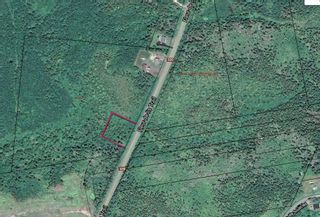 Photo 4: Lot Highway 320 in Pondville: 305-Richmond County / St. Peters & Area Vacant Land for sale (Highland Region)  : MLS®# 202114159