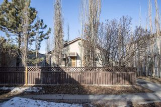 Photo 23: 8045 24 Street SE in Calgary: Ogden Detached for sale : MLS®# A1081367