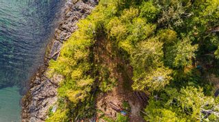 Photo 6: 863 Elina Rd in : PA Ucluelet Land for sale (Port Alberni)  : MLS®# 870302