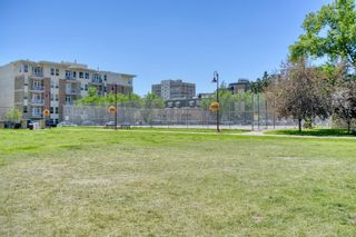 Photo 33: 502 215 13 Avenue SW in Calgary: Beltline Apartment for sale : MLS®# A1126093