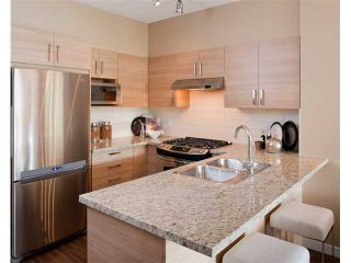 Photo 2: 520 3178 DAYANEE SPRINGS Boulevard in Coquitlam: Westwood Plateau Condo for sale : MLS®# V987094