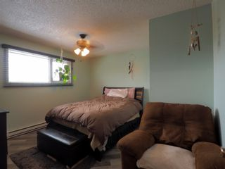 Photo 16: 85 19th Street NW in Portage la Prairie: House for sale : MLS®# 202107132