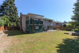 Photo 3: 3805 CLEMATIS Crescent in Port Coquitlam: Oxford Heights House for sale : MLS®# R2200625