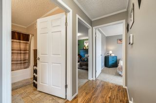 Photo 11: 7404 TWP RD 514: Rural Parkland County House for sale : MLS®# E4255454