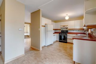 Photo 13: 3603 Chippendale Drive NW in Calgary: Charleswood Detached for sale : MLS®# A1103139