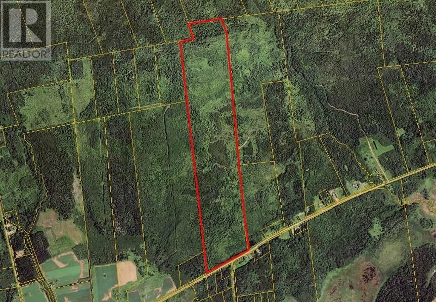 Main Photo: Lot Route 960 in Upper Cape: Vacant Land for sale : MLS®# M135281