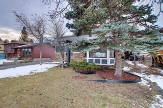 Photo 49: 15 Glenpatrick Place: Cochrane Detached for sale : MLS®# A1051475