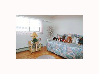 Photo 7: 2667 WAVERLEY Avenue in Vancouver: Killarney VE House for sale (Vancouver East)  : MLS®# V815087