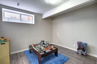 Photo 36: 10 CRANWELL Link SE in Calgary: Cranston Detached for sale : MLS®# A1036167
