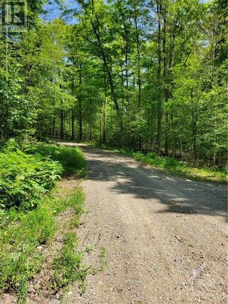 Photo 20: 2600 CLYDE LAKE ROAD in Lanark: Vacant Land for sale : MLS®# 1253879