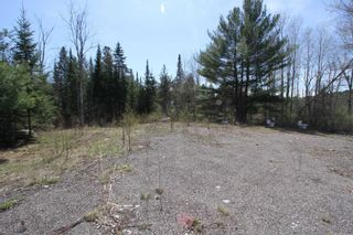 Photo 3: 259 County Rd 41 Road in Kawartha Lakes: Rural Bexley Property for sale : MLS®# X5210398