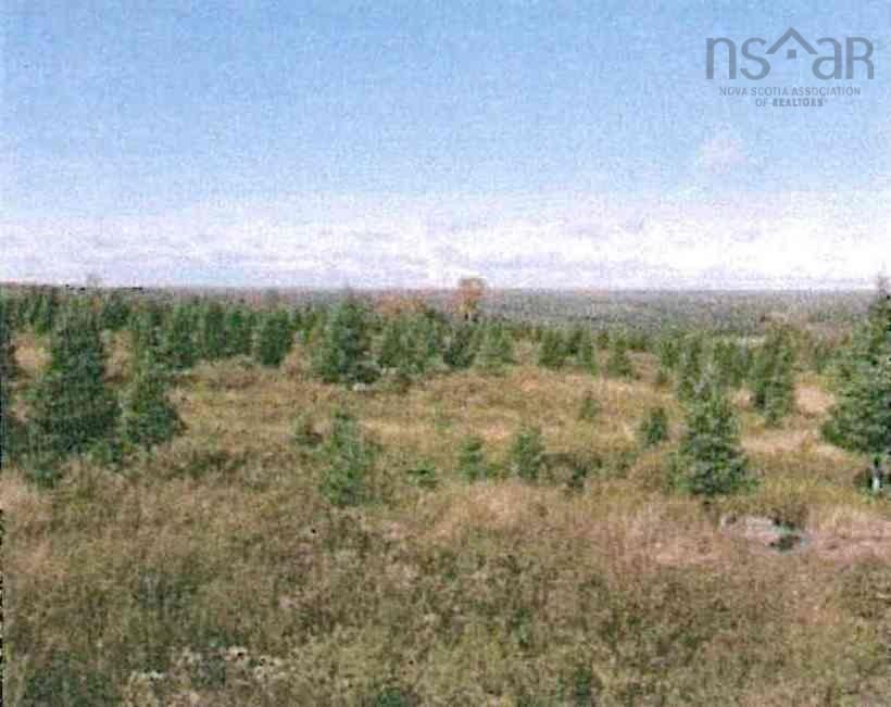 Main Photo: East River East Side Road in Springville: 108-Rural Pictou County Vacant Land for sale (Northern Region)  : MLS®# 202122398