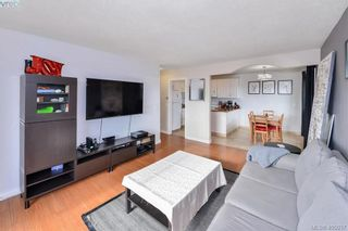 Photo 4: 403 1215 Bay St in VICTORIA: Vi Fernwood Condo for sale (Victoria)  : MLS®# 804854