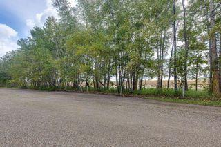 Photo 46: 432041 Highway 795: Rural Ponoka County Detached for sale : MLS®# A1148748