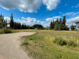 Photo 4: 50 53217 RGE RD 263: Rural Parkland County Rural Land/Vacant Lot for sale : MLS®# E4260089