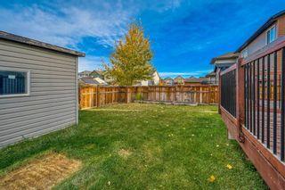 Photo 20: 821 Auburn Bay Boulevard SE in Calgary: Auburn Bay Detached for sale : MLS®# A1064937