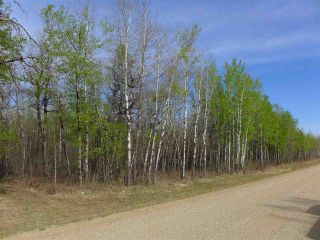 Photo 3: 50 Ave RR 281: Rural Wetaskiwin County Rural Land/Vacant Lot for sale : MLS®# E4191207