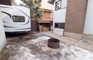 Photo 29: 76 Templeby Drive in Calgary: Temple Detached for sale : MLS®# A1077458