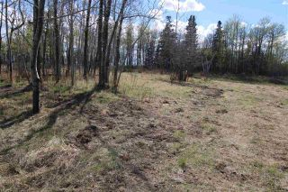 Photo 1: 57032 RR 50: Rural Lac Ste. Anne County Rural Land/Vacant Lot for sale : MLS®# E4244016