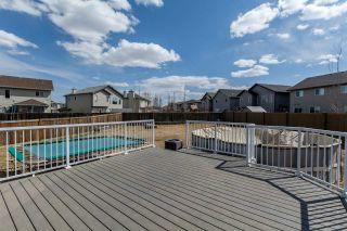 Photo 18: 12003 168 Avenue in Edmonton: Zone 27 House for sale : MLS®# E4240879