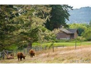Photo 19: 6786 East Sooke Rd in SOOKE: Sk East Sooke House for sale (Sooke)  : MLS®# 479613