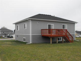 Photo 22: 5102 60 Avenue: Elk Point House for sale : MLS®# E4197855