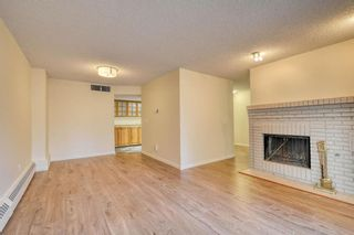 Photo 21: 201 2425 90 Avenue SW in Calgary: Palliser Apartment for sale : MLS®# A1052664