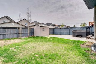 Photo 45: 1571 COPPERFIELD Boulevard SE in Calgary: Copperfield Detached for sale : MLS®# A1107569