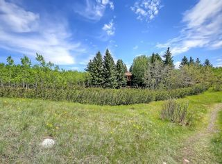 Photo 32: 75 Anatapi Lane SW in Calgary: Springbank Hill Detached for sale : MLS®# A1099057