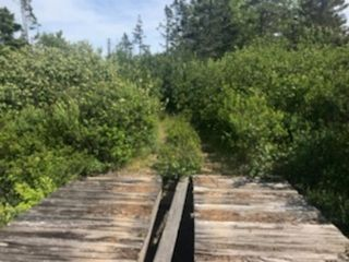 Photo 4: 217 Highway in Central Grove: 401-Digby County Vacant Land for sale (Annapolis Valley)  : MLS®# 202001807
