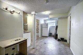 Photo 34: 208 Taradale Drive NE in Calgary: Taradale Detached for sale : MLS®# A1067291