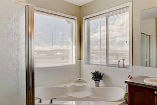 Photo 25: 155 CHAPALINA Mews SE in Calgary: Chaparral Detached for sale : MLS®# C4247438
