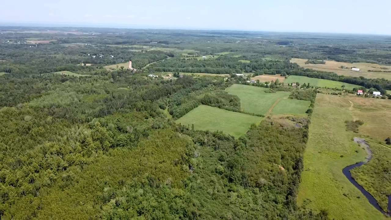Main Photo: West Branch Road in Welsford: 108-Rural Pictou County Vacant Land for sale (Northern Region)  : MLS®# 202013159