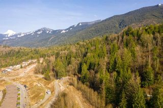 Photo 14: 8000 NIXON Road in Chilliwack: Eastern Hillsides Land Commercial for sale : MLS®# C8037477