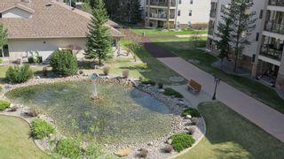 Photo 1: 412 8956- 156 ST in Edmonton: Zone 22 Condo for sale : MLS®# E4156857