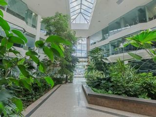 Photo 9: 1550 Enterprise Road in Mississauga: Northeast Property for sale : MLS®# W5161295