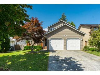Photo 1: 26587 28A AVENUE in Langley: Aldergrove Langley House for sale : MLS®# R2389841