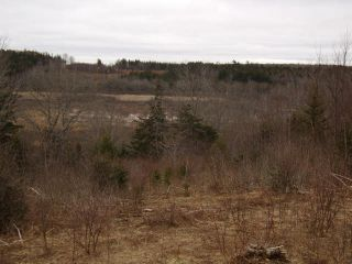 Photo 4: LOT PLEASANT VALLEY in Yarmouth: County Hwy 340 Vacant Land for sale : MLS®# 4868156
