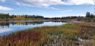 "Photo 30: 54910 JARDINE Loop: Cluculz Lake House for sale in ""Cluculz Lake"" (PG Rural West (Zone 77))  : MLS®# R2622149"