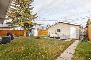 Photo 28: 260 Van Horne Crescent NE in Calgary: Vista Heights Detached for sale : MLS®# A1144476