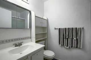 Photo 12: 58 380 BERMUDA Drive NW in Calgary: Beddington Heights Row/Townhouse for sale : MLS®# A1026855
