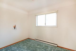 Photo 16: 4101 Carey Rd in : SW Marigold House for sale (Saanich West)  : MLS®# 857802