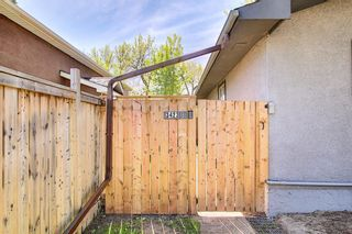 Photo 26: 3423 30A Avenue SE in Calgary: Dover Detached for sale : MLS®# A1114243