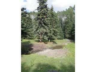 Photo 16: 2 miles west of Dartique Hall in COCHRANE: Rural Rocky View MD Rural Land for sale : MLS®# C3545361
